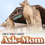 Great Wolf Parent Panel