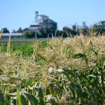 A Tour of Monsanto's Research Fields and the Science Behind Better Food